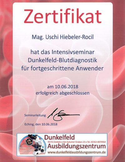 Blutdiagnostik